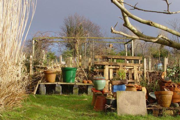 A sleeping winter garden?