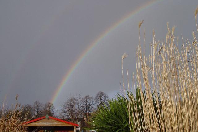 A rainbow over Plot 44.