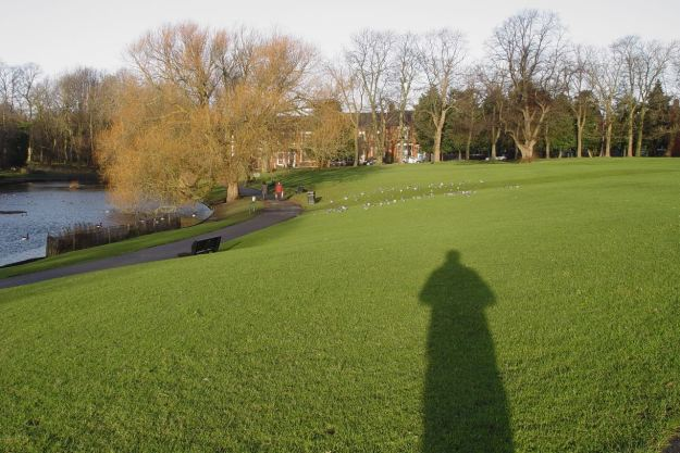 Across Greenbank Park in the low December sunshine.