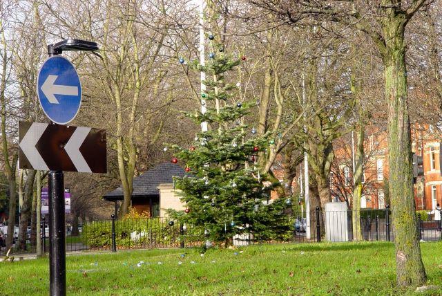 The Princes Avenue roundabout is feeling festive.