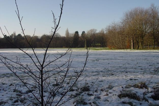 And into the snowfields of Sefton Park.