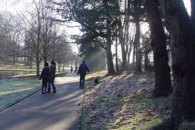 Sun rays glinting on the family walks.