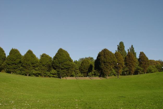The hill full of tower blocks? Mostly grassed over.