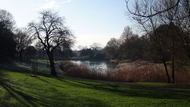 To this vision of paradise in winter that is Princes Park.