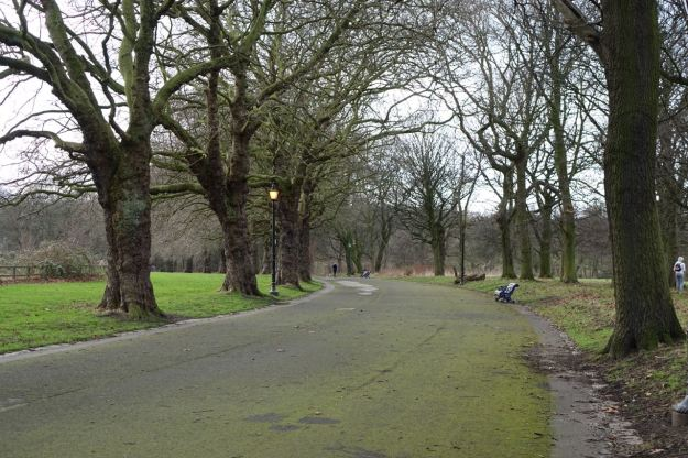 Over into Sefton Park.