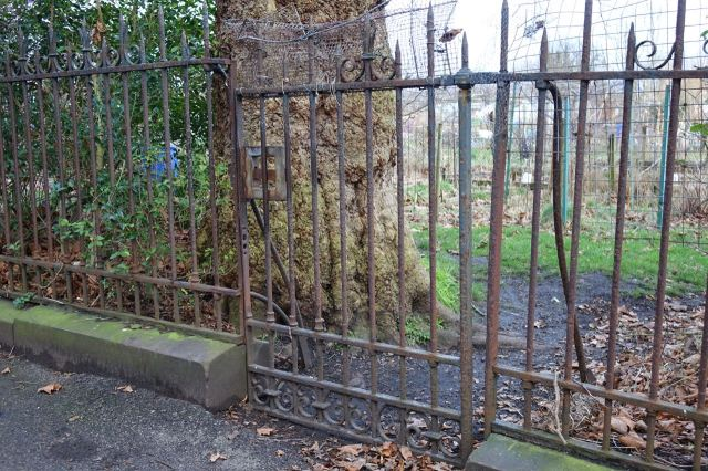 And the 'Secret Gate' of Greenbank Lane Allotments.