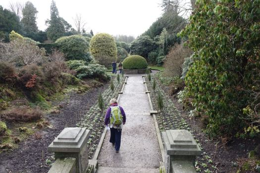To explore the garden.