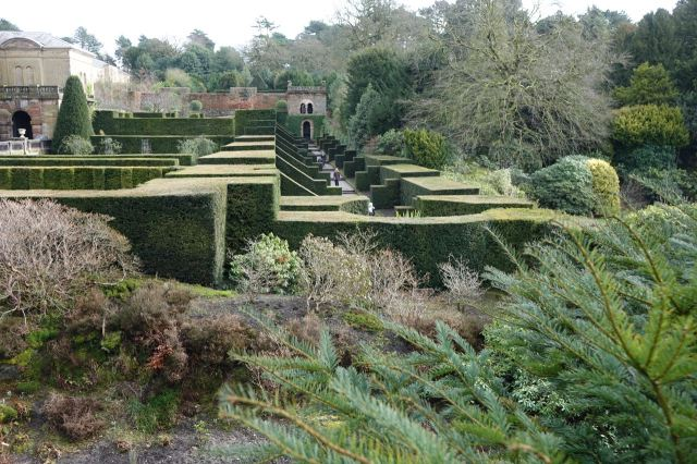 Extravagantly maintained yew hedging.