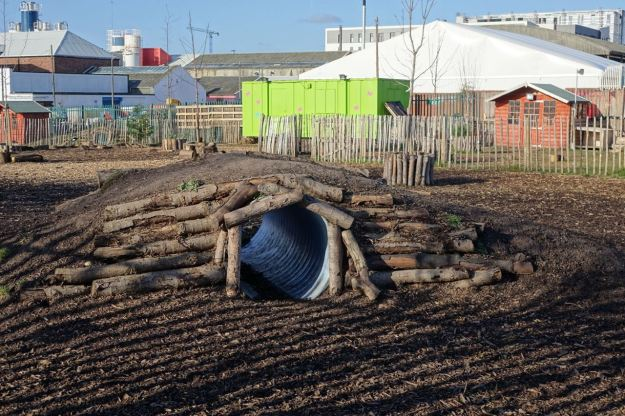 Now there's a pet's adventure playground.