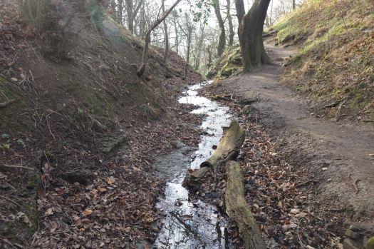 The stream slips over into a ravine.