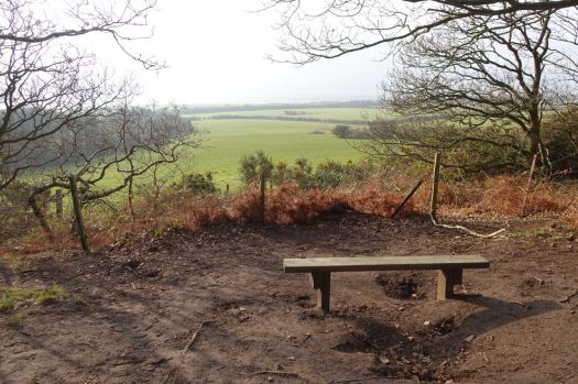 While I sit and look out over a misty estuary.