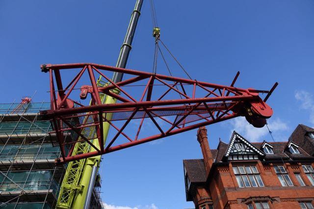 Giant Cranes36