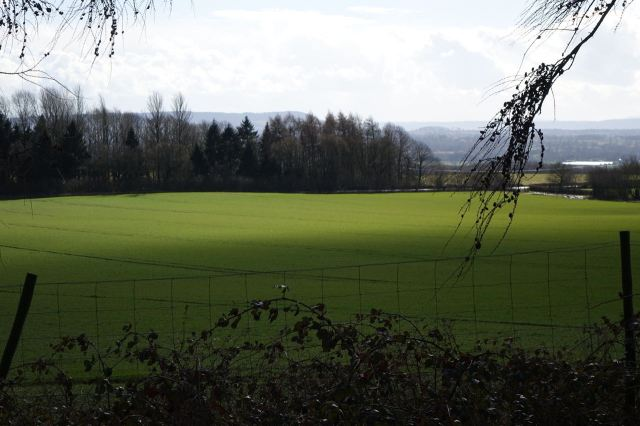 The fields here are rich and green.