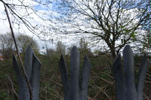 But now its brambles guarded by a big fence.
