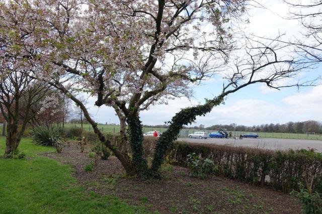 Walton Hall Park - 66