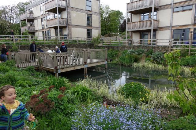 Lilac, the UK's first affordable ecological cohousing oasis!