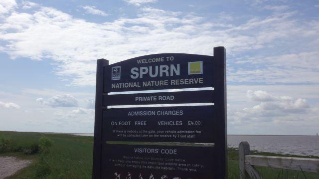 spurn sign