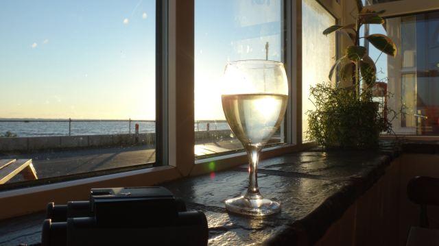 spurn wine