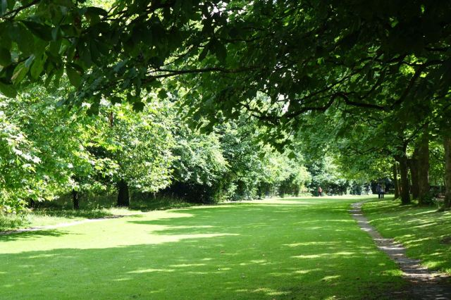 And I sit for an hour or so reading in Sefton Park.
