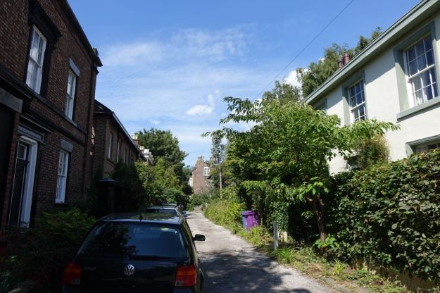 Around Lark Lane - 63