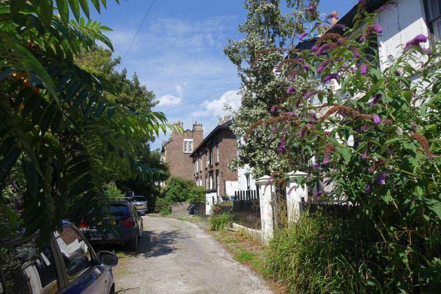 Around Lark Lane - 64