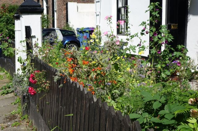 Around Lark Lane - 65