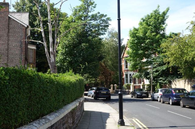 And round the back of Lark Lane on Ivanhoe Road.