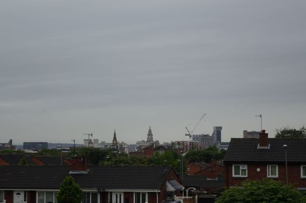 And the Cityscape.