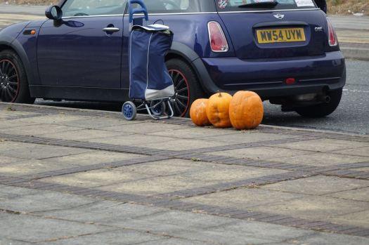 And more pumpkins!