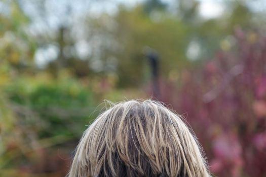 The head gardener, or at least the gardener's head.