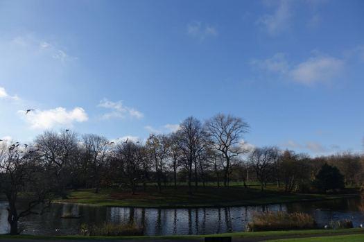 Through Greenbank Park, edging into winter now.