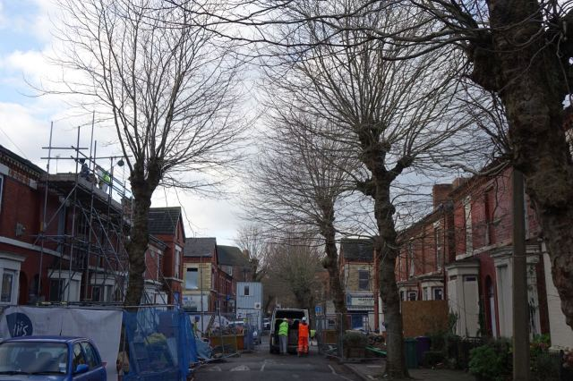 Thursday 7th December begins like so many days this last special year in Granby, on site.