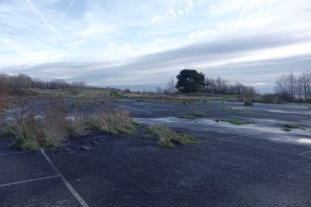 Across a classic piece of edgeland, a long abandoned car park.