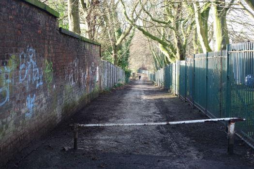 Along Ibbotson's Lane.