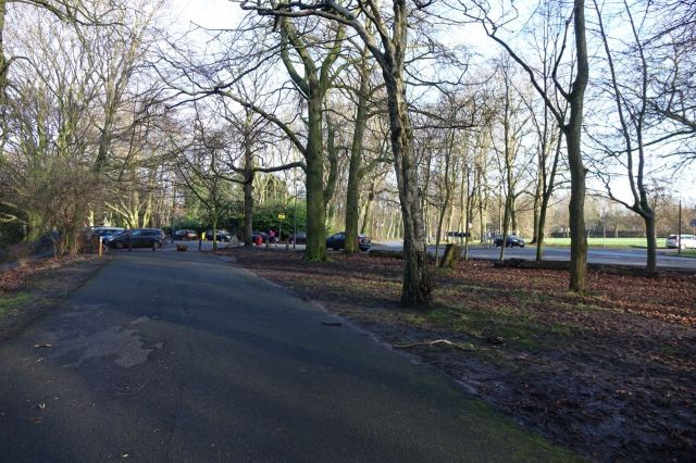 Into Sefton Park, walking through the winter trees.