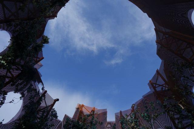 Looking up from life, at Rotunda.