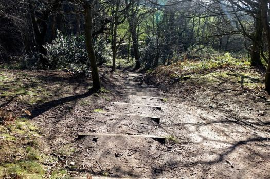 The steep steps