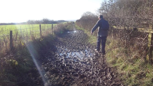 Along seriously muddy lanes.