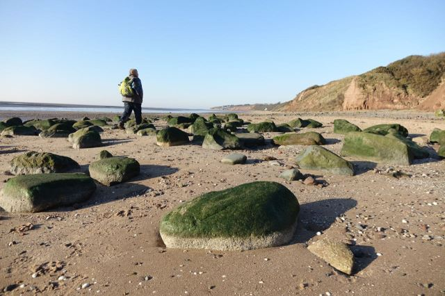 And Sarah tells me the increasing mossiness of these stones we usually sit on is clear evidence of the amount of fresh water that's now running down onto the normally salty beach.