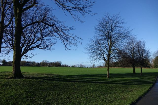 A cold bright morning turning off Priory Road into the park.