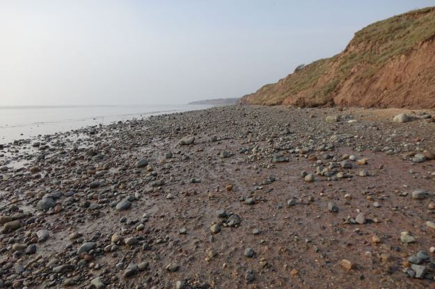 The boulders that glaciation carried from Cumbria to form the cliffs now mostly strewn across the former sandy beach.