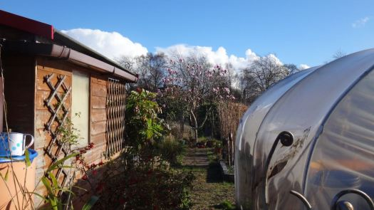Then from her own allotment gate.