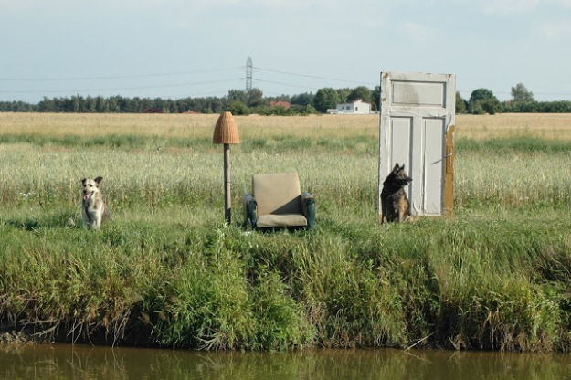 Home? 2005 - installation using found objects and joined by dogs. Bucowiec, Poland.