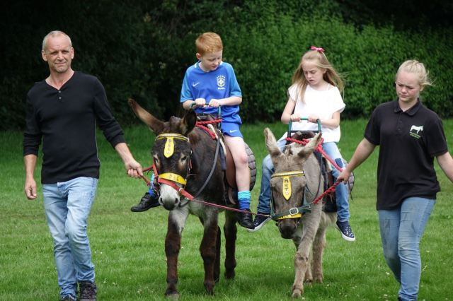 And donkey rides.