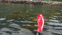aug kayak_10