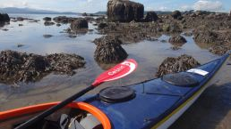 aug kayak_52