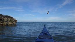 aug kayak_66