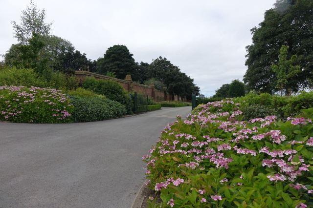 High summer in the formal Edwardian gardens.