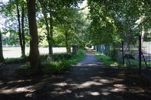 Along silent almost secret Ibbotson's Lane.