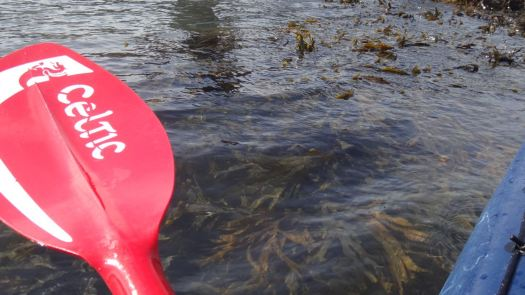 16-09-kayak_43